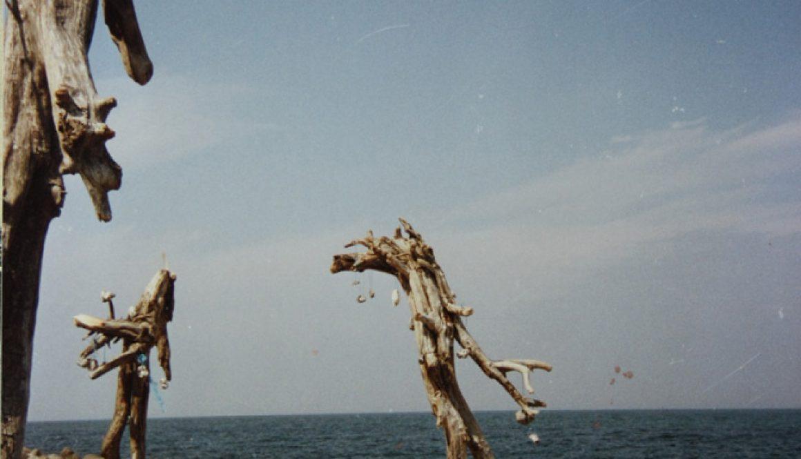 """Torsten Schlüter, """"Liebespaar"""", 1989, Installation an der Hucke auf Hiddensee II, Holz, je 450x100cm"""