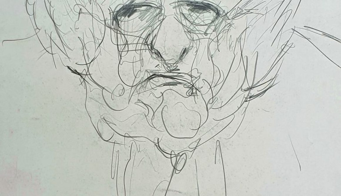 Aufrechter Dichter, Stefan Heym, 1989, Bleistift, 68x48cm Chemnitz, Heike Harno